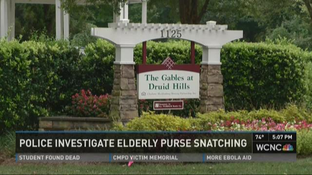 Police investigate purse snatching