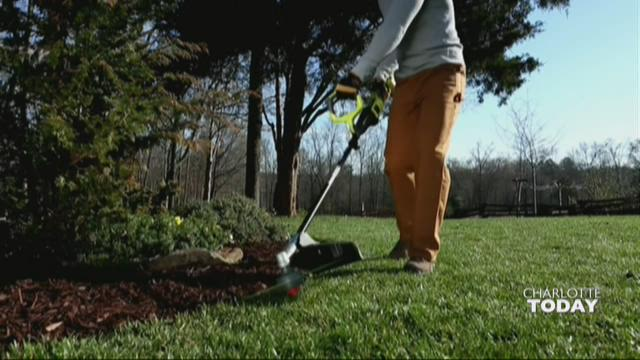 Watch: How to make your yard look professionally landscaped