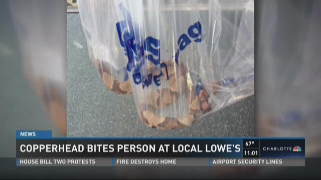 Lowe S Food Hourly Pay