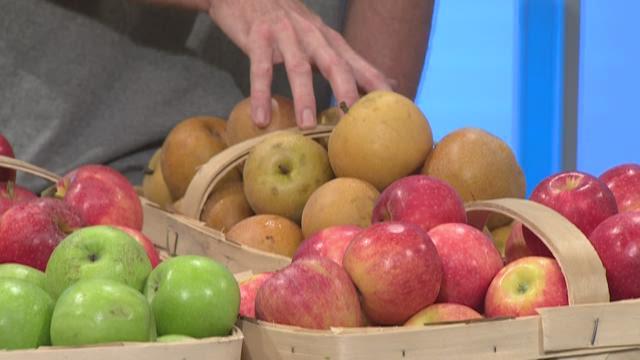 The best apple crop in 15 years
