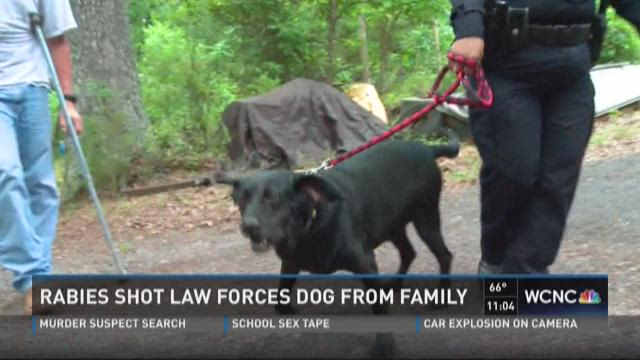 Rabies law forces dog from faimly