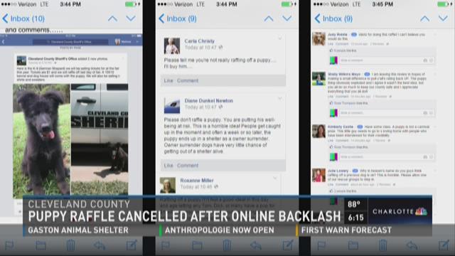 Puppy raffle canceled after online backlash