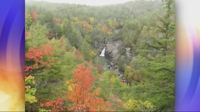The Best Destinations To See Fall Foliage